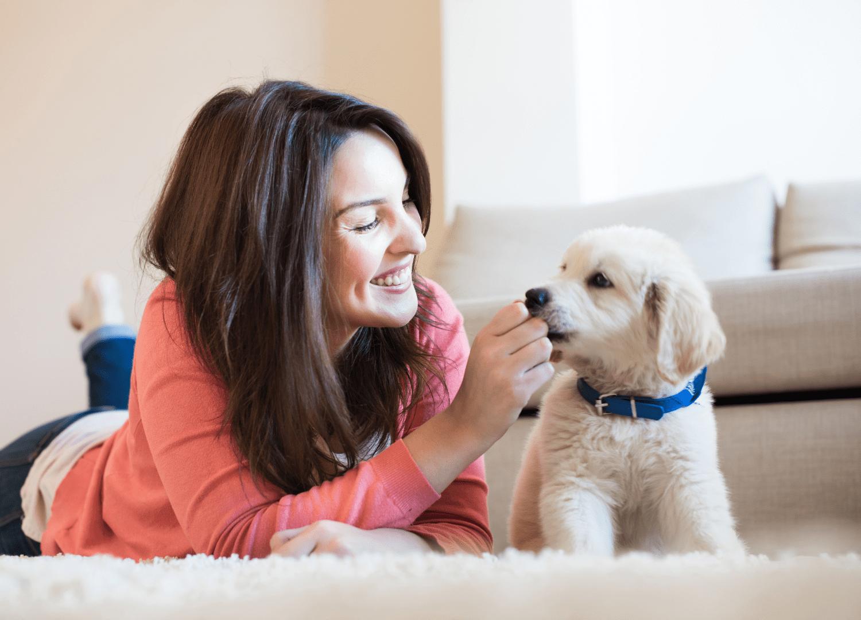 girl feeding a cute dog