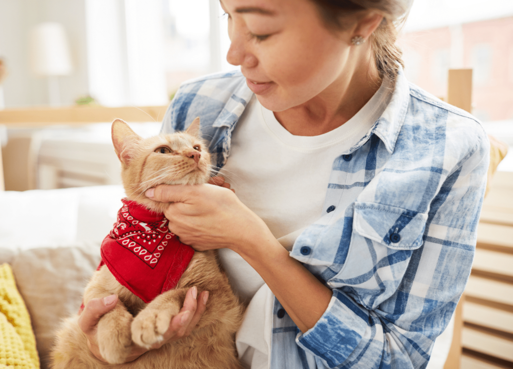 girl petting a cat with a red scarf
